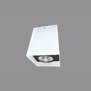 SURFACE MOUNTED LIGHTS